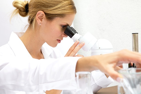 pharmaceutical research and development program